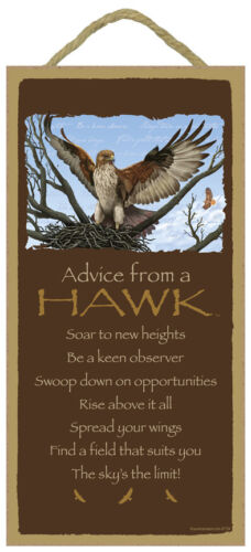 ADVICE FROM A HAWK Wood INSPIRATIONAL SIGN wall hanging PLAQUE wild bird USA NEW