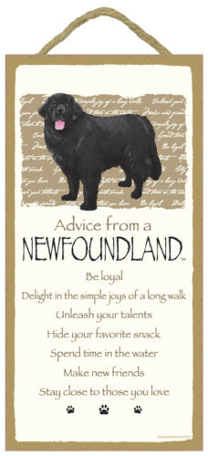 Advice From A Newfoundland 10 x 5 Wood SIGN Plaque USA Made