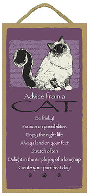 "Advice from a Cat Sign Plaque Kitten 5"" x 10""  Pet Gift"