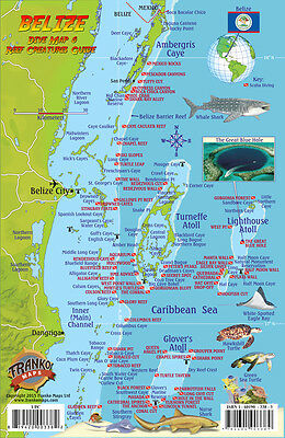 Belize Dive Map & Coral Reef Creatures Guide Laminated Fish Card by Franko Maps
