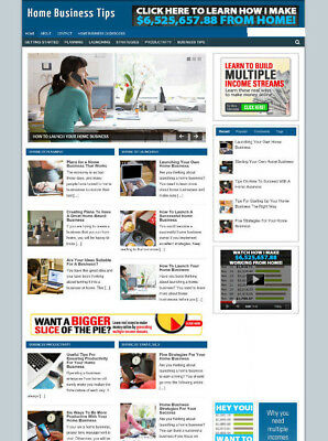 Home Business Tips Website With Blog And Affiliates New Domain And Hosting