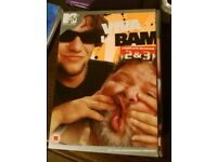 Viva La Bam DVDs (Seasons 1-5)