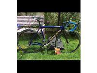 Principia rexe ellipse project road bike 53cm