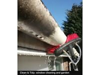 Gutter and facia cleaning offers- maintenance