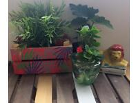 Pink Palm Leaves Painted Small Garden Patio Window Boxes