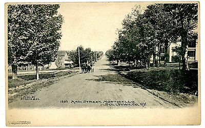 Monticello Ny   Residential Section Of Main Street   Postcard Sullivan County