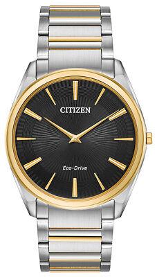 Citizen Eco-Drive Men's AR3074-54E Stiletto Black Dial Two-Tone 38mm Watch