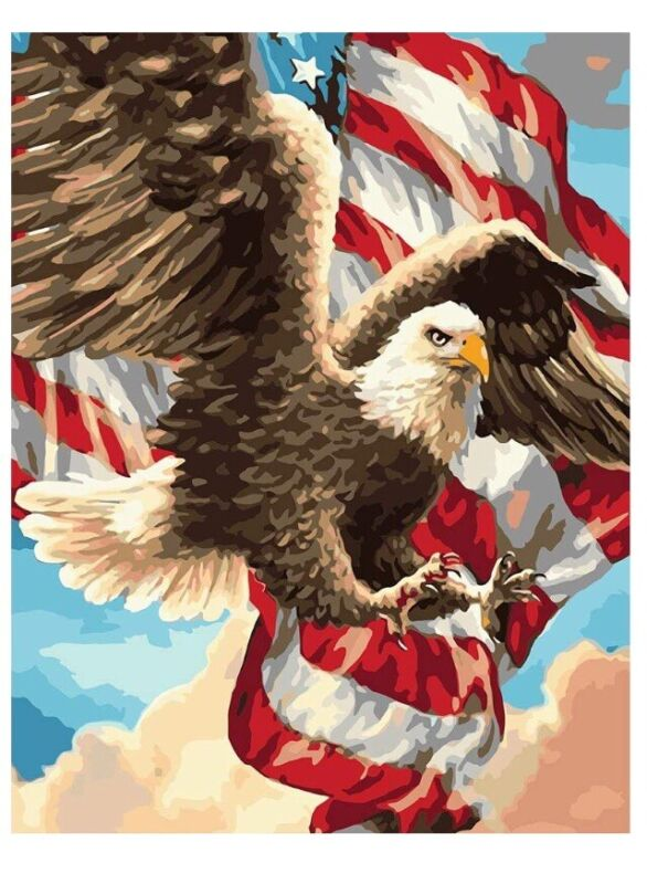 Paint by Numbers DIY Acrylic Oil Painting Kit for Adults 16x20In, Eagle USA Flag