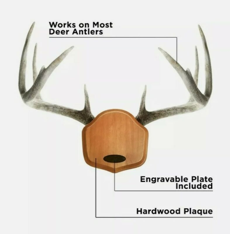 Allen Trophy Horn Mounting Kit Engravable Versatile Deer Antlers Etc.