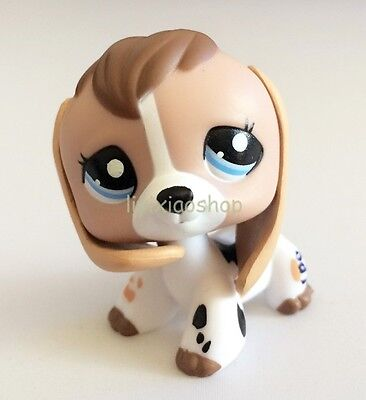 Cow Eye - LPS Littlest Pet Puppy Dog White Black Tan Blue Eye Cow Print Baby Beagle