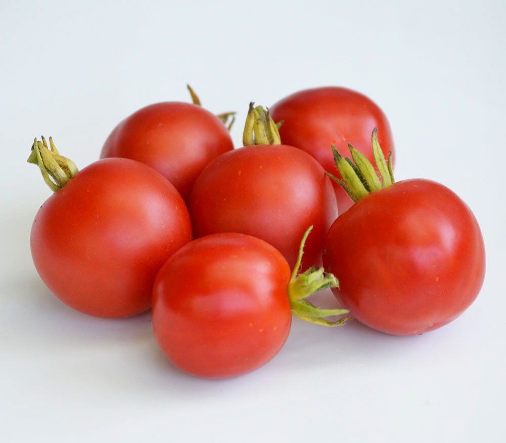 Légume TOMATE GARDENERS DELIGHT 130 FINEST SEEDS ** FREE UK P /& P **