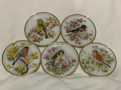 5 Vintage A K Kaiser Germany Porcelain Plates Coasters Bird Design