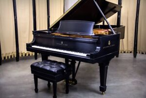 STEINWAY Model D, Spectacular Piano, The Piano Boutoque