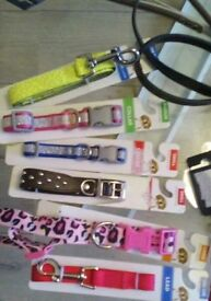 Dog, pet collars/leads/assessories , poop dispensers great Xmas gifts