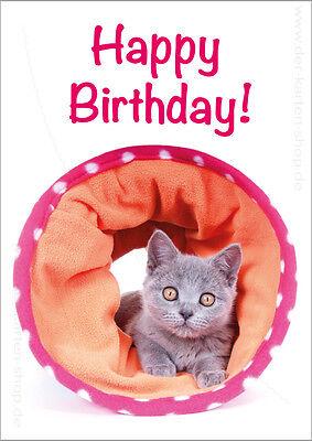 te Postkarte Grußkarte BKH-Katze Kätzchen