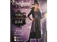 Enchanting witch includes velveteen dress hat and collar size 5-7