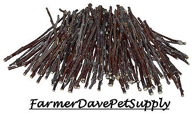 - 100 APPLE ULTRA SKINNY CHEW TWIGS FOR SMALL ANIMALS