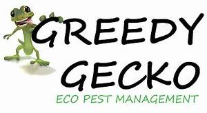 Greedy Gecko Eco Pest Management Yorketown Yorke Peninsula Preview