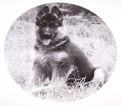 Kuchenplatte  Motiv Schäferhund Hund Glasplatte Tortenplatte Platte Neu