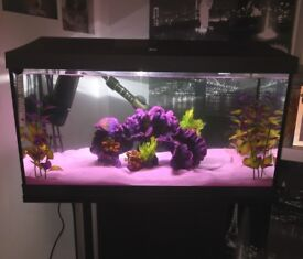 Brand new fish tank, stand and accessories.