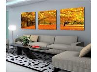 Beautiful canvas wall art