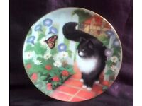 Limited Edition USA CAT Collectors' Plate Art