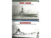 MODEL SHIPS - HMS HOOD & BISMARCK