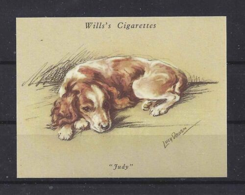 1940 Reissue LUCY DAWSON Dog Art UK Cigarette Trade Card WELSH SPRINGER SPANIEL