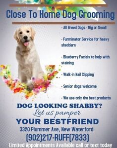 Close To Home Dog Grooming
