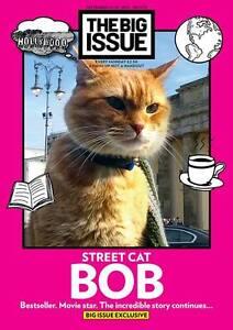 Assistir A Street Cat Named Bob Film