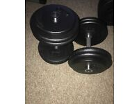 Professional 25 kg(each) dumbells