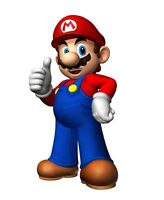 Super Mario's Painting Services