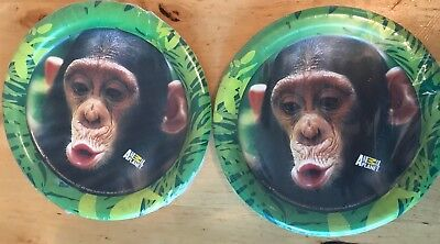 Animal Planet Party Supplies 16 7inch Plates Monkey - Animal Planet Party Supplies