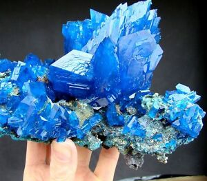 Huge - 9&quot; Electric Blue CHALCANTHITE Cluster - Poland - XL 1,7kg - 3.7LB ! - <span itemprop='availableAtOrFrom'>Klodzko, Polska</span> - Huge - 9&quot; Electric Blue CHALCANTHITE Cluster - Poland - XL 1,7kg - 3.7LB ! - Klodzko, Polska