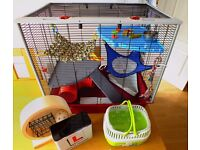 Rat Cage - Very good condition