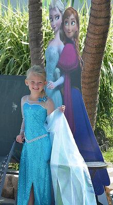 Elsa Dress frozen costume !! bithday dress lot of detail handmade snow Queen