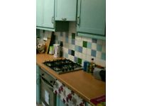 Kingston (close to town centre and uni) Student houseshare 3 female housemates wanted from September