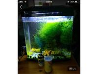30l fish tank