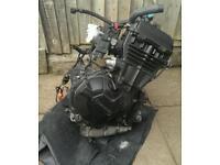 Ninja 300 engine