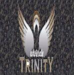 trinitywholesale