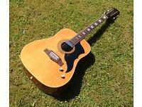 Rare `70`s EKO Ranger 12 String electro-acoustic guitar (Made in Itay)