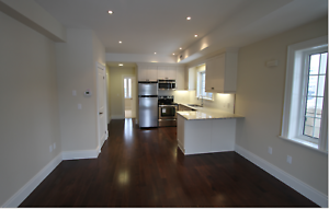 Upscale Uptown Townhome - 133 Park Street, Unit 201