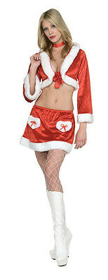 Lady Santa Costume SEXY CHRISTMAS COOKIE Faux Fur Suit w Hood Adult Medium 10 12