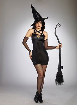 Dreamgirl Wicked Witch Broomstick Black Adult Womens Halloween Costume 10663