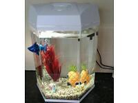 Fish tank ,3 small fish.