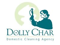 Need a break from cleaning...?? Domestic Cleaning & Ironing, End of Tenancy and One-off cleans.