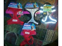 4x Comfort Mesh Dog Harness red black designer Small 34-45cm&3.5m tape LEAD local delivery& Paypall