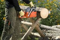 Chainsaw shapening