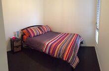 Room for rent Cranbourne East Casey Area Preview