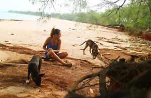 Island Girl & 2 dogs looking for a short term home in Townsville Townsville Townsville City Preview